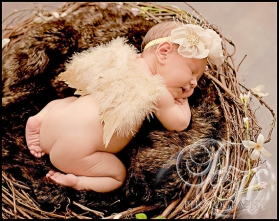 Golden Lullaby Tan Angel Baby Feather Wings