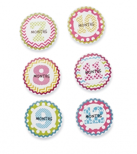 Mud Pie - Baby Girls Monthly Milestone Stickers - 1-12m