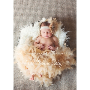 Champagne Gold Feather Pettiskirt