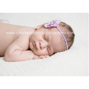 Dainty Lavender Flower & Feather Accent Headband
