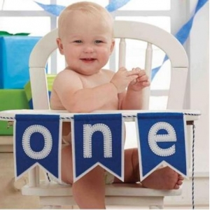 Blue  Boy One High Chair Banner
