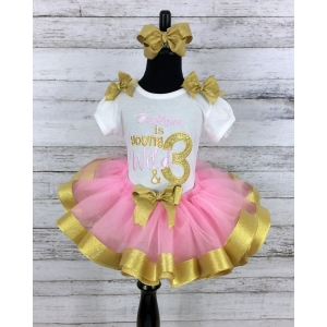 Birthday Young and Wild Personalized Pink & Gold Ribbon Birthday Tutu 3 Pc Set-Tutu-Shirt-Headband 1st 2nd 3rd 4th 5th 6th Birthday