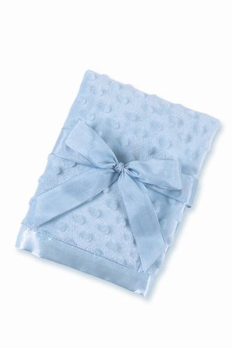 Light Blue Personalized Minky Dot Baby Blanket The