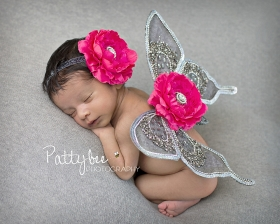 Hot Pink & Pewter Elegance Sequin Butterfly Wings & Headband Set