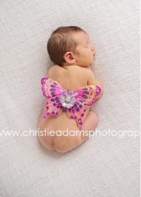 Purple & Hot Pink Pizazz Newborn Wings