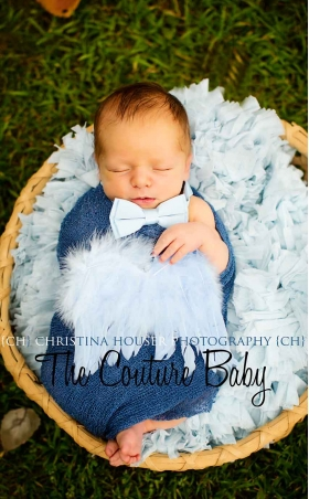 Baby Blue Newborn Feather Wings 1st Photo