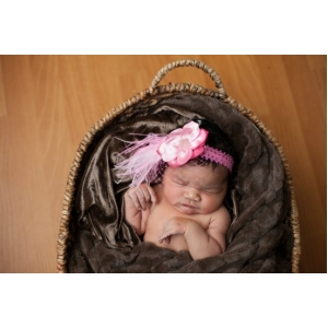 Hot Pink & Pink Flower & Ostrich Feather Lace Headband