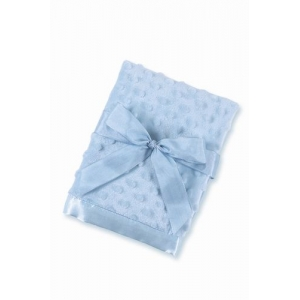 Light Blue Personalized Minky Dot Baby Blanket