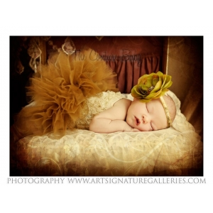Golden Moss Sequin Headband