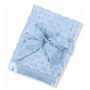 Light Blue Bearington Minky Security Blanket