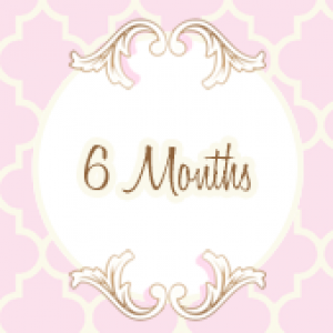 6 Months Headband of the Month