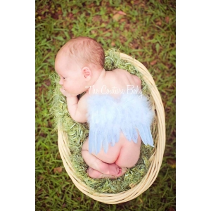 Baby Blue Newborn Angel Feather Wings 1st Photo