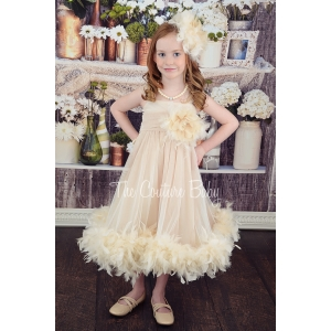 Champagne Dream Tulle Feather Dress