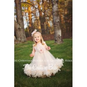 Vanilla Blush Ivory & Mauve Silk & Tulle Feather Dress